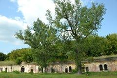 Porosłe ruiny Kobrin fortyfikowanie Brest forteca fotografia stock