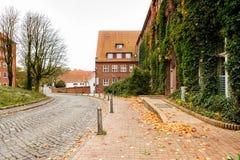 Porosły antyczny budynek w Lubeck, Niemcy fotografia stock