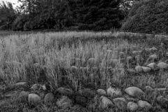 Porosły medytacja labitynt fotografia stock