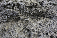 Porous natural structure of the stone Royalty Free Stock Photos