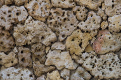 Porous pumice stones wall Royalty Free Stock Photography