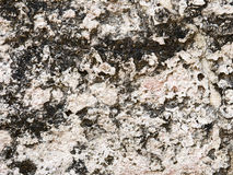 Porous sandstone Royalty Free Stock Photography