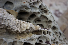 Porous stones. Natural stones are porous with a beautiful pattern Stock Photography