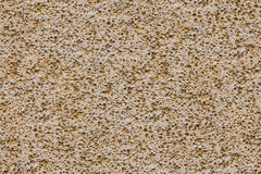 Porouse scrub texture seamless background, foam stone limestone Stock Photography