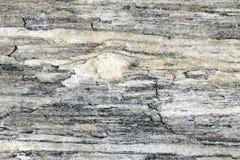 Porphyroclast dans une roche métamorphique posée images libres de droits