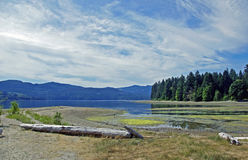 Inlet View. View of Sechelt Inlet and headwater Porpoise Bay at low tide in summer next to Porpoise Bay Provincial Park Royalty Free Stock Photos