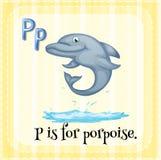 Porpoise Stock Image
