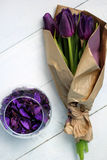 Porpora dei tulipani: congratulazioni, l'8 marzo giorno internazionale del ` s delle donne, il 14 febbraio giorno del ` s del big Fotografie Stock