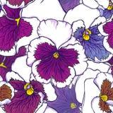 Porpora fresca disegnata a mano e fiori blu della viola Modello senza cuciture per progettazione del tessuto, della carta da para illustrazione di stock