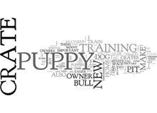 Porque é essencial ao trem da caixa sua nuvem de Pit Bull Terrier Puppy Dogword Foto de Stock