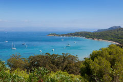 Porquerolles island bay in France Stock Image