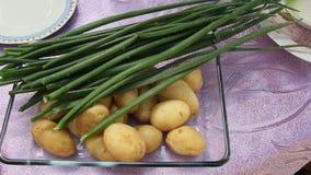Porrees und gekochte Kartoffeln stock footage