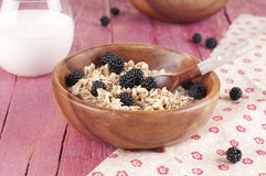Porridge with blackberry Stock Photography
