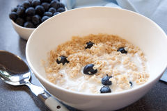 Porridge with Blueberries Stock Photography