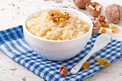 Porridge in a bowl Royalty Free Stock Images
