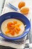 Porridge con la pesca ed il yogurt Immagini Stock Libere da Diritti