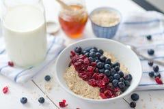 Porridge with cranberries Stock Images