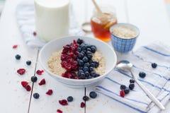 Porridge with cranberries Royalty Free Stock Image