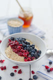 Porridge with cranberries Royalty Free Stock Photos