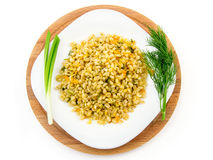 Porridge dell'orzo in un piatto con le verdure, l'aneto e la cipolla verde, fuoco selettivo Fotografie Stock Libere da Diritti
