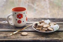 Porridge della farina d'avena della prima colazione con il piatto variopinto della cannella e della mela, biscotto immagine stock libera da diritti