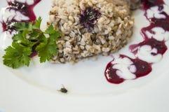 porridge e mosca del grano saraceno immagini stock libere da diritti