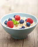 Porridge with fresh berries Stock Photography