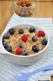 Porridge with fresh berries Stock Images