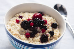 Porridge with fresh berries Stock Image