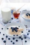 Porridge with fresh blueberries Stock Photography