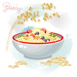 Porridge and fruits in bowl isolated on white background. Vector illustration of porridge and fruits in bowl isolated on white background. Porridge breakfast Stock Photos