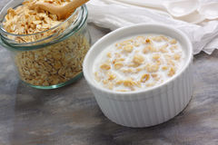 Porridge with milk Royalty Free Stock Images
