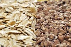 Porridge and millet divided. Macro Royalty Free Stock Photo