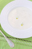 Porridge (oatmeal) Stock Image