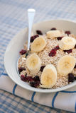 Porridge oats, cranberries & sliced banana Royalty Free Stock Photos