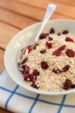 Porridge oats & dried cranberries Stock Photo