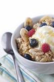 Porridge oats & fruit Royalty Free Stock Photos