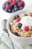 Porridge oats & fruit Royalty Free Stock Photo