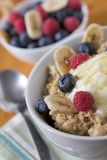 Porridge oats & fruit Royalty Free Stock Photos