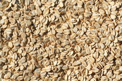 Porridge oats texture background. Royalty Free Stock Photography