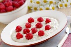 Porridge with raspberries Royalty Free Stock Photography