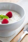 porridgehallon Fotografering för Bildbyråer