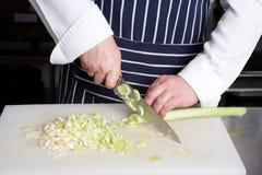 Porro del taglio del cuoco unico Immagine Stock Libera da Diritti