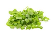 Porro verde isolato su fondo bianco immagine stock libera da diritti