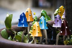 Porselein gekleurde Paddestoelen in de tuin stock foto's