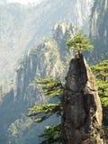 Porslin för Huangshan berg Royaltyfri Foto