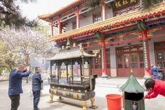 Porslin för religion för folk för dag för JilieSi tempelHarbin vår be royaltyfri bild