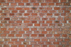 Porslin för vägg för röd tegelsten Arkivfoto