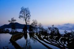 porslin liggande terrasserade yunnan arkivbilder