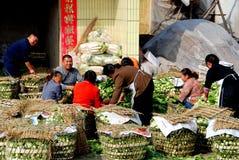 porslinbönder som packar pengzhougrönsaker arkivbild